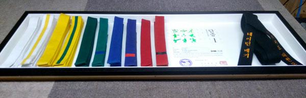 martial arts belts framing